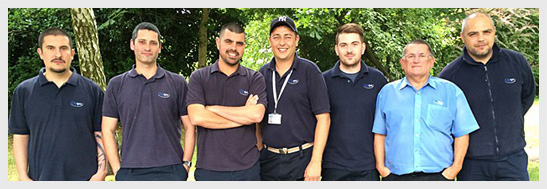 Surrey Pest Control Team